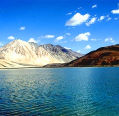Ladakh and the Hemis Festival Blue Berry Trails