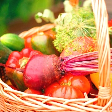 Growing Organic Vegetables at Home
