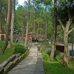 Photography trip to Binsar